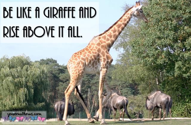 rise above giraffe.png