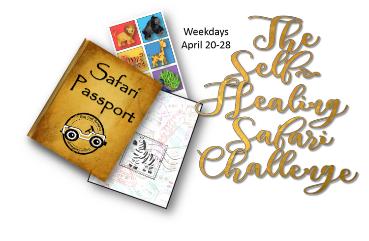safari book and stickers.png